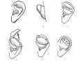 荆州医院做耳畸形矫正的效果怎么样?费用是多少?